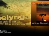 African Tribal Orchestra - Heart Of Africa - Melynga