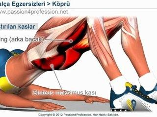 Kalça eritme hareketleri, HIZLI güzel kalça - egzersiz hareketleri videoları - Köprü