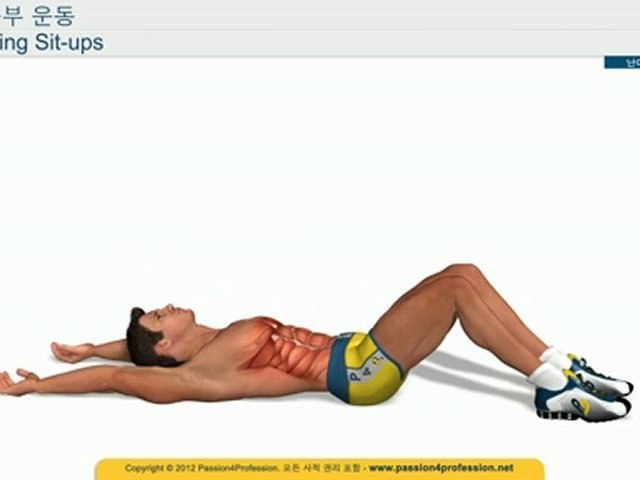 복근 다이어트운동 뱃살을 빼주는 하복부 운동 - Sling Sit Up
