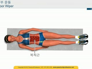 복근운동, 복근만들 여자 남자 - Floor Wiper