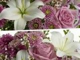 Send Love Romance Flowers in Houston TX Ace Flowers Houston Love Romance Flowers