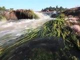 Saut Maripa : SURF, FUN & FUNK