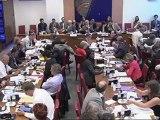 Intervention en commission : emploi d'avenir Fanélie Carrey-Conte