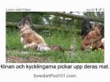 Learn Swedish with Video - Learning Swedish Vocabulary for Farm Animals Has Never Been More Fun!