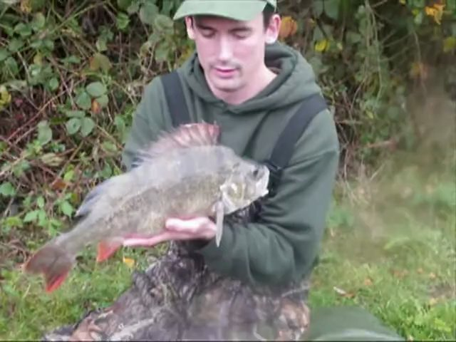 Alan Stagg with his massive 5lb 4oz perch