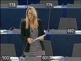 Intervention session plénière - Strasbourg - Septembre 2012