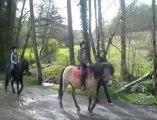 """Aywaille: Les élèves de l'école primaire sportive """"La Redoute"""" à leur cours d'équitation"""