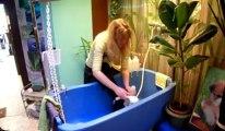 Après le toilettage chez Marylor Dufour à Mons les chiens sortent tout propre