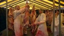 Namur: Aïd El Kebir, le sacrifice du mouton