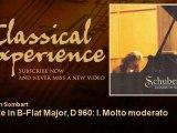 Franz Schubert : Sonate in B-Flat Major, D 960: I. Molto moderato - ClassicalExperience