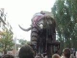 éléphant royal de luxe dans la foule