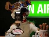 Chien, Chat, Animal de compagnie, Assur O' Poil TV Jack Russel Assurance Sante Animaux