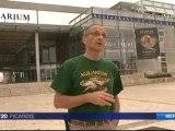 2 tortues luth retrouvées mortes sur les plages de Picardie et du Pas de Calais