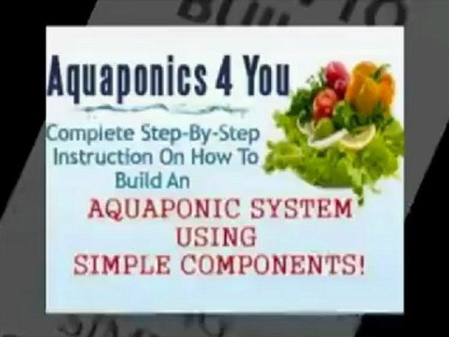 How to Develop your DIY Aquaponics System