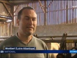 Sofiprotéol, bête noire des agriculteurs. Reportage France 3