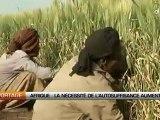 Afrique: La necessité de l'autosuffisance alimentaire