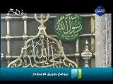 قدر النبي صلى الله عليه وسلم عند الله - الشيخ محمد حسان