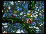 Retro Replays Donkey Kong Country 2: Diddy's Kong Quest (SNES) Part 4