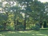 C.C.Immobilier_Plouaret, 22420, (1714-MLM), achat, vente, Maison, immobilier, Côte, Granit Rose , Armor, Trégor, Bretagne