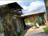 AG 2118 Immobilier Gaillac. Proche Gaillac,  maison rénovée en pierre blanche 280m² de SH, 4 chambres,sur environ 3ha de terrain