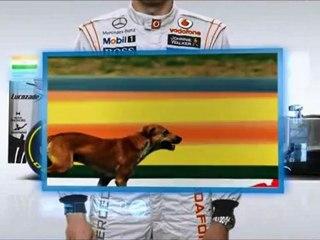 F1, GP India 2012: La guida alla pista di Jenson Button