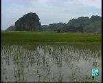 Vietnam et Cambodge le dragon asiatique