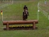 1.  Andrew Nicholson (NZL) & Nero - Pau (FRA) 2012/10/28 CCI 4* (Cross+Jumping)