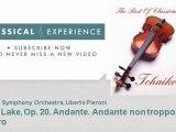 P  Tchaikovsky   Swan Lake, Op  20  Andante  Andante non troppo  Allegro - ClassicalExperience