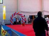 Taiga, emma, agility, ch. jeunes conducteurs 2012, agility