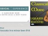 Johann Sebastian Bach : Bach: toccata in e minor bwv 914 - ClassicalExperience