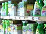 Jardinage d'automne: traitements anti-insectes - Conseils d'experts - Quejadore.com
