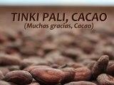 Tinki Pali, Cacao (muchas gracias, Cacao). Documental sobre el enfoque de cadena de valor en el cacao en Honduras. PYMERURAL, 2012.