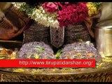 Tirupati Temple Darshan - Waterfalls Review