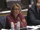 Questions à Louis Gallois en Commission des Affaires économiques
