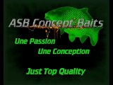 photos du shop ...asb concept - baits