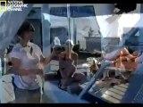Köpek Balığı Adamlar - Murekkep Balıklarının Izinde www.turkcebelgeselizle.com