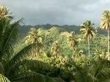 Gauguin à Tahiti et aux Marquises