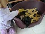 Bébés d'Emy-Lee 1 mois