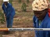 Biocarburants: La FAO demande de la prudence