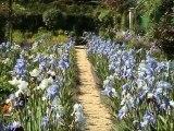 GIVERNY - Jardin Claude Monet