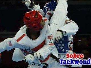 Taekwondo training software/ Taekwondo program
