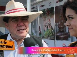 E P20: Roberto Samamé, promotor cultural del pisco