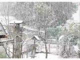 Neige : les images des internautes en moins de 3 minutes