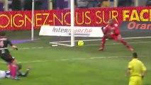 Toulouse FC (TFC) - Olympique de Marseille (OM) Le résumé du match (18ème journée) - saison 2012/2013