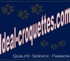 Croquettes chien et croquettes chat