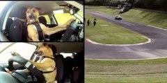 VIDEO Un chien qui conduit vraiment une voiture