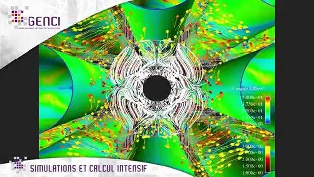 Simulations et calcul intensif