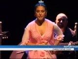 Exposition de Flamenco à l'Institut Andalou (Nîmes)