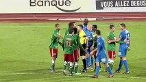 Chamois Niortais (NIORT) - CS Sedan (CSSA) Le résumé du match (18ème journée) - saison 2012/2013