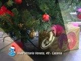 Redazionale 3 Store - Natale 2012 - News D1 Television TV